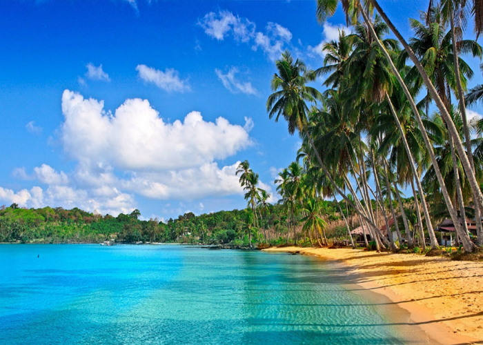 Reasons To Visit Andaman And Nicobar Islands
