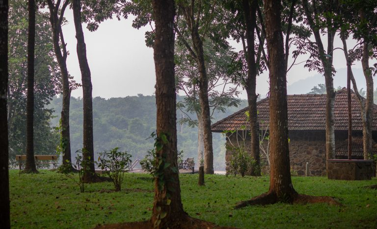 Quiet by the river, CGH Earth - river lodge 1