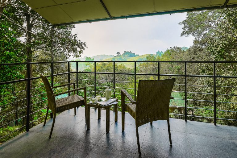 Wayanad Wild BalconywithMountainview