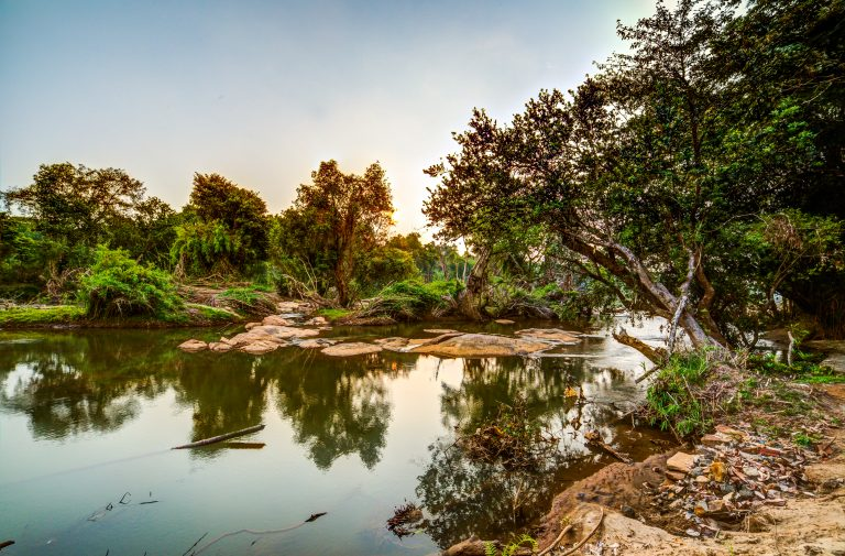 Quiet by the river, CGH Earth - riverside retreat- periyar river 5